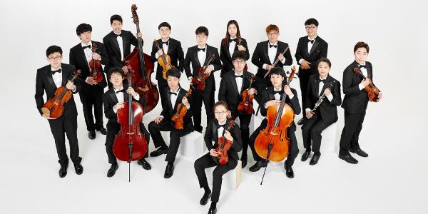 viva chamber orchestra musicalta.
